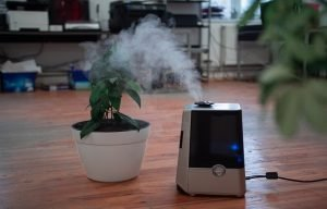 Best Air Purifiers For Allergies And Pets-Complete Buying Guide